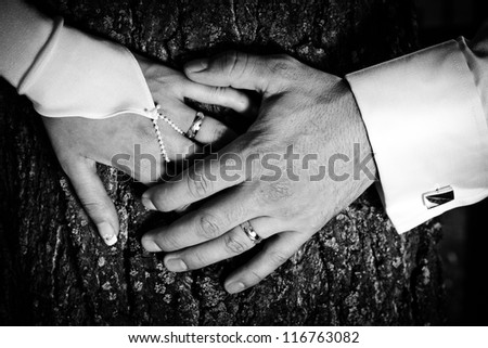 newlyweds hands with rings - stock photo