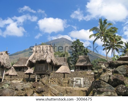Ngada village from the ngadhus and bhagas - Bajawa - Flores - Indonesia. - stock photo