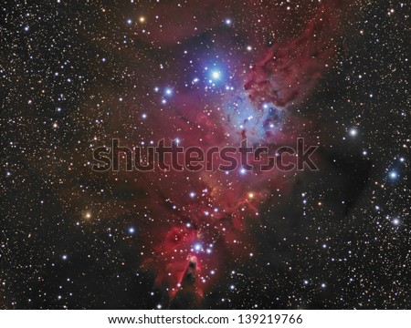 NGC2264: A nebula in the constellation Monoceros. Also known as the Cone Nebula an/or Fox Fur Nebula