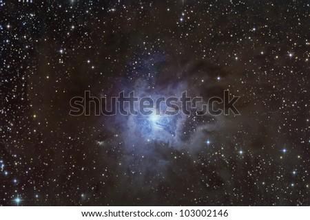 NGC 7023 Iris Nebula - stock photo