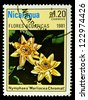 "NICARAGUA - CIRCA 1981: A stamp printed in Nicaragua shows a Water Lillie, with the inscription ""Nymphaea Marliacea Chromat"", from the series ""Aquatic flowers"", circa 1981 - stock photo"