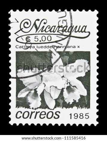 "NICARAGUA - CIRCA 1985: A stamp printed in Nicaragua shows Cattleya lueddemanniana with the same inscription, from the series ""Tropical flower"", circa 1985"