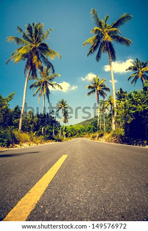 Nice asfalt road with palm trees against the blue sky and cloud - stock photo