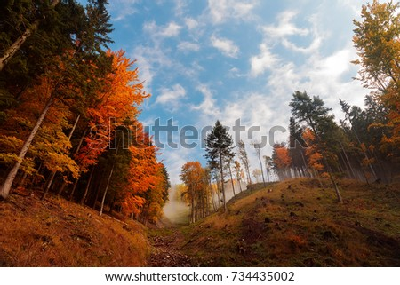 nice autumn scenery Slovakia hills with color trees and fog on the top and blue sky