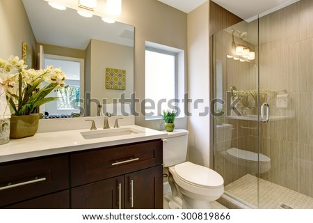 Nice bathroom with glass shower, and small plants as decor. - stock photo