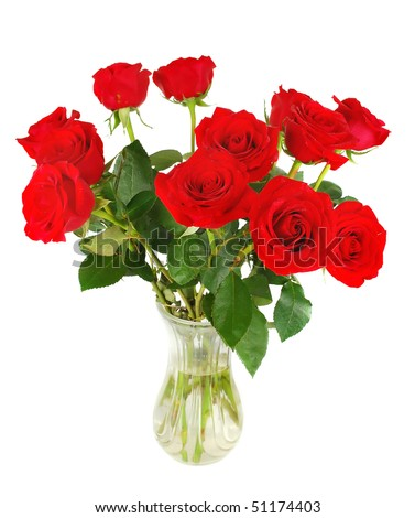 Nice big fresh red roses isolated a white background n glass vase. - stock photo