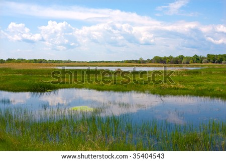 Nice landscape with river flux - stock photo