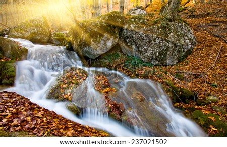 Nice scene with autumn stream in forest - stock photo
