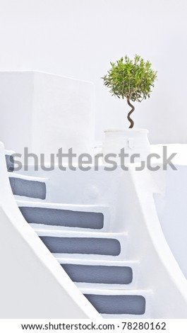 nice stairs with olive tree in Santorini Greece - stock photo