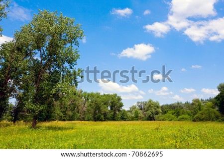 Nice summer scene in steppe - stock photo