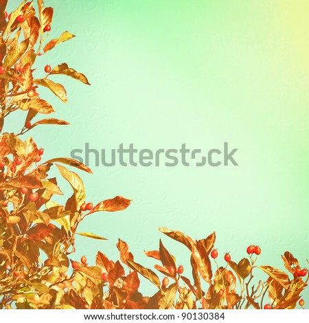 Nice textured background image of autumn leaves and a blue sky
