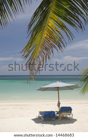 Nice vacation picture with parasol and palm leaves