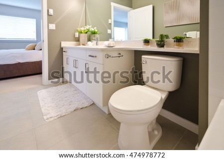 Nicely Decorated Modern Washroom Bathroom With The Toilet Sit Sink Some Plants On