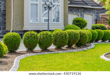 Nicely trimmed bushes and lawn in front of the house, front yard. Landscape design.