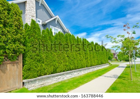 Nicely trimmed green fence and the house behind one in the suburbs of Vancouver, Canada. Keeps privacy and security. Landscape trimming design. - stock photo