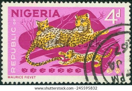 NIGERIA - CIRCA 1973: Postage stamp printed in Nigeria, shows cheetah in the Yankari National Park, circa 1973 - stock photo