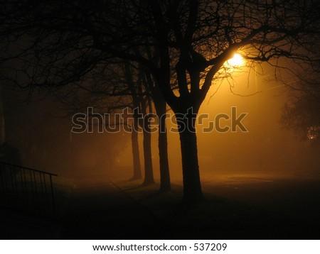 Night Fog - stock photo