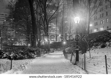 Night in Central Park, New York City during snow storm - stock photo