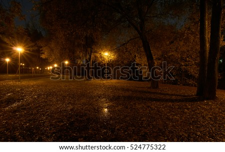 Night in the park and street lights with star filter effect. Park near Yauza river in Babushkinskiy district, Moscow.