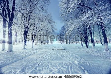 night landscape in winter city park - stock photo