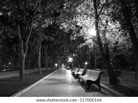 Night Park Wood Benches and Alley Late Autumn black white