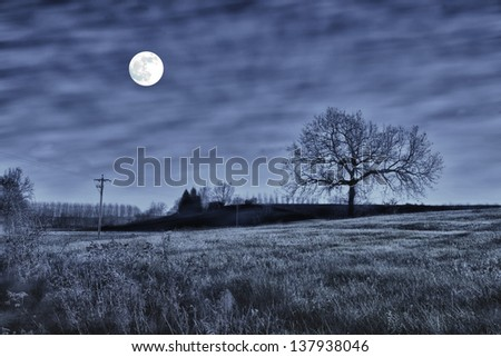Night scene with a tree and full moon - stock photo