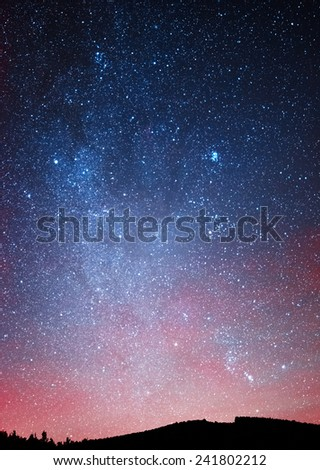 Night sky over the forest - stock photo