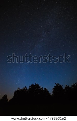 Night sky with bright stars. Against the background of tree crowns in the forest. View of the Milky Way.