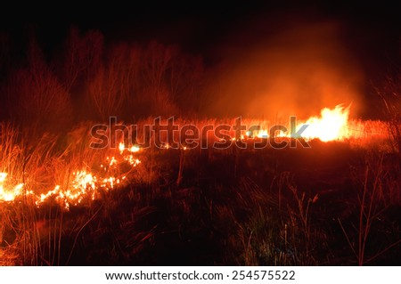 night uncontrolled grass fire (wildfire) - stock photo