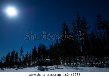 Night winter scene with full moon and starry sky - stock photo