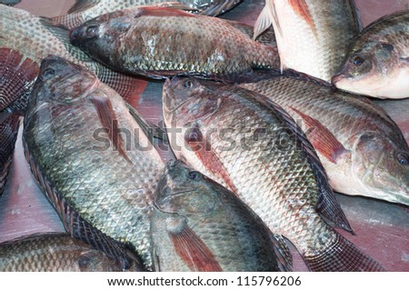 nile tilapia as an additive ingredient Effect of different sources and levels of some dietary biological additives on: i - growth performance and production economy of nile tilapia fish.
