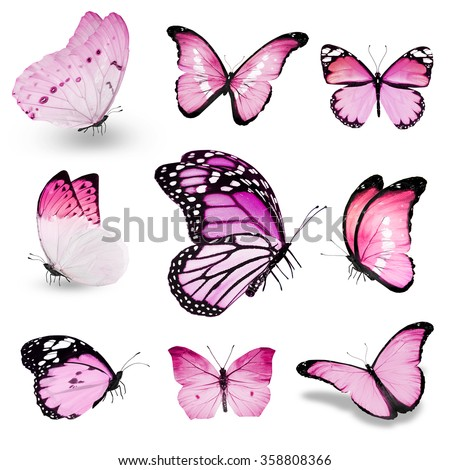 Nine pink butterflies on white background - stock photo