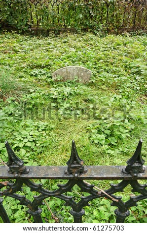Nineteenth century cemetery plot with fence and vines - stock photo