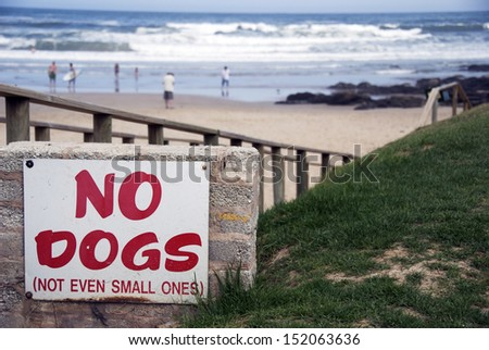 No dogs, not even small ones