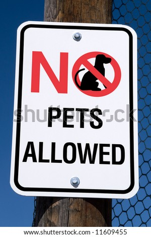 No pets allowed sign on a post