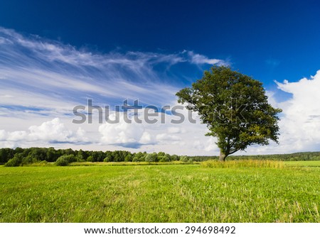 Nobody Outside Field Landscape  - stock photo