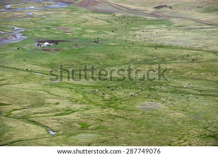 Nomad camp in the Chuya steppe, Altai Mountains - stock photo