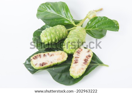 Noni, Great morinda, Beach mulberry. ( Morinda citrifolia L.) - stock photo