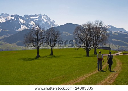Nordic walking in Swiss Alps. Rigi mountain is on the background.