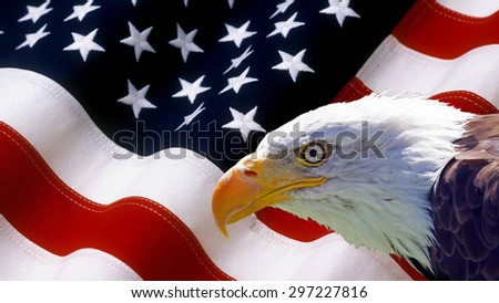North American Bald Eagle on American flag . - stock photo