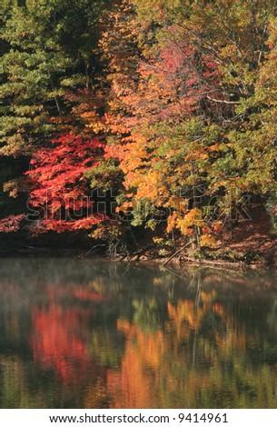 North Carolina Fall foliage - stock photo