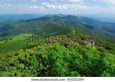 North Carolina Mountain Landscape Scenic The North Carolina Mountains as viewed from Grassy Ridge during the Catawba Rhododendron bloom in June. - stock photo