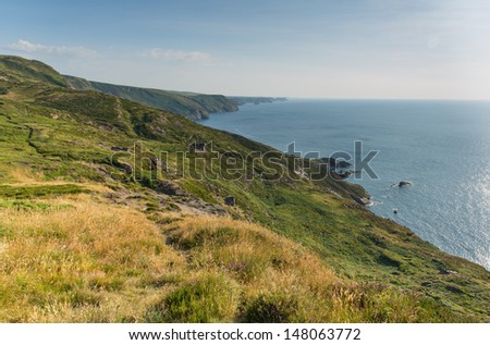 North Cornwall coast at Strangles near Crackington Haven between Bude and Tintagel  England UK on a beautiful sunny summer day