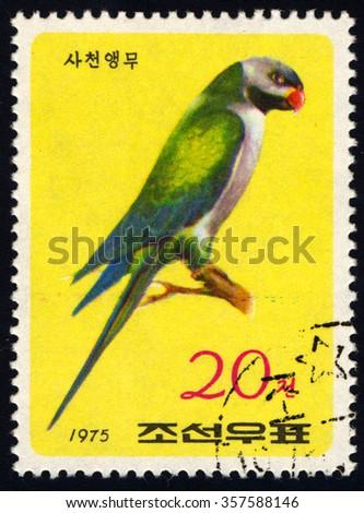 NORTH KOREA - CIRCA 1975: A stamp printed in North Korea shows Blyth Parakeet, Parrots series, circa 1975 - stock photo