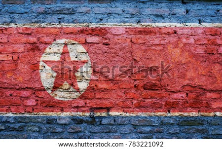 North Korea flag on the brick wall texture