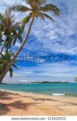 North Pattaya beach and Coconut, Chonburi, Thailand - stock photo