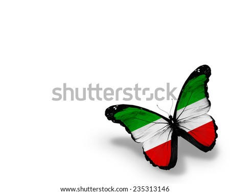 North Rhine-Westphalia  flag butterfly, isolated on white background - stock photo