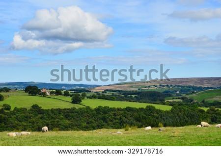 North York Moors, North Yorkshire, England. - stock photo