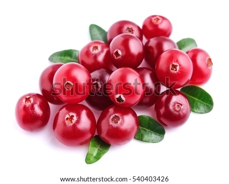 Northern berries - cranberries isolated on white backgrounds.
