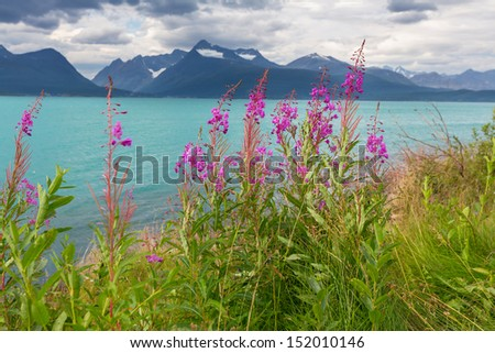 Northern  Norway landscapes - stock photo